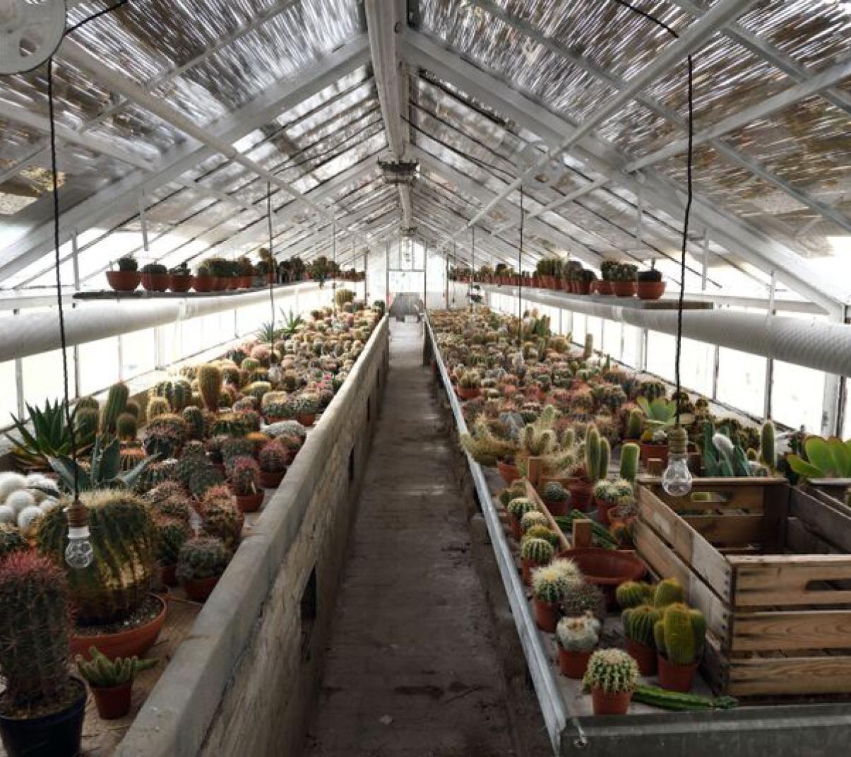 Zahradnictví (photo Karel Cudlín)